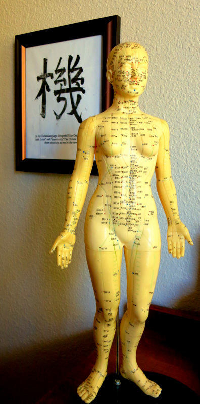 Acupuncture Body